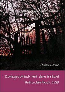 Volker Friebel Cover Zwiegespräch mit dem Irrlicht (2)